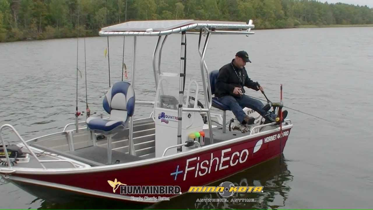 Quintrex 440 Hornet Pro Green Machine Fishing.